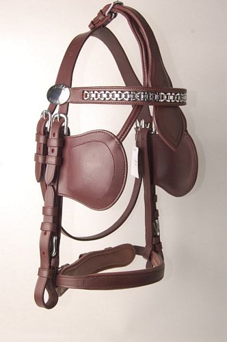 Luxe Leather Bridle